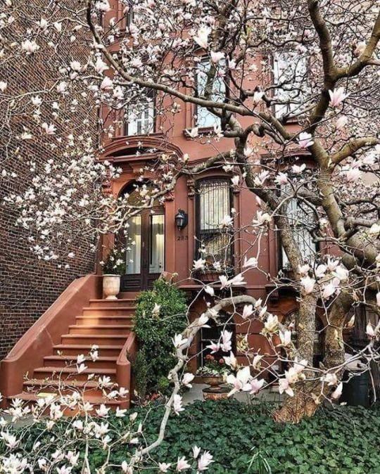 Beautiful Brownstone New York Townhouse New York City Manhattan Manhattan Nyc