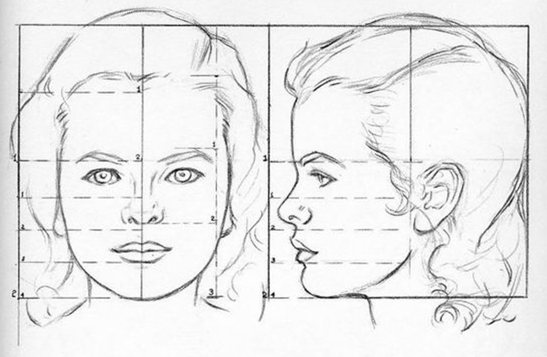 Part Four Heads Of Boys And Girls Praxis Drawing Tutorial Face Proportion Art Drawings