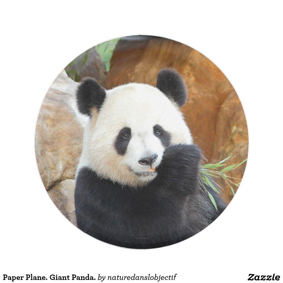 Plane Paper. Giant Panda Paper Plate  sc 1 st  Pinterest & Plane Paper. Giant Panda Paper Plate | Zazzle PodArtist Community ...