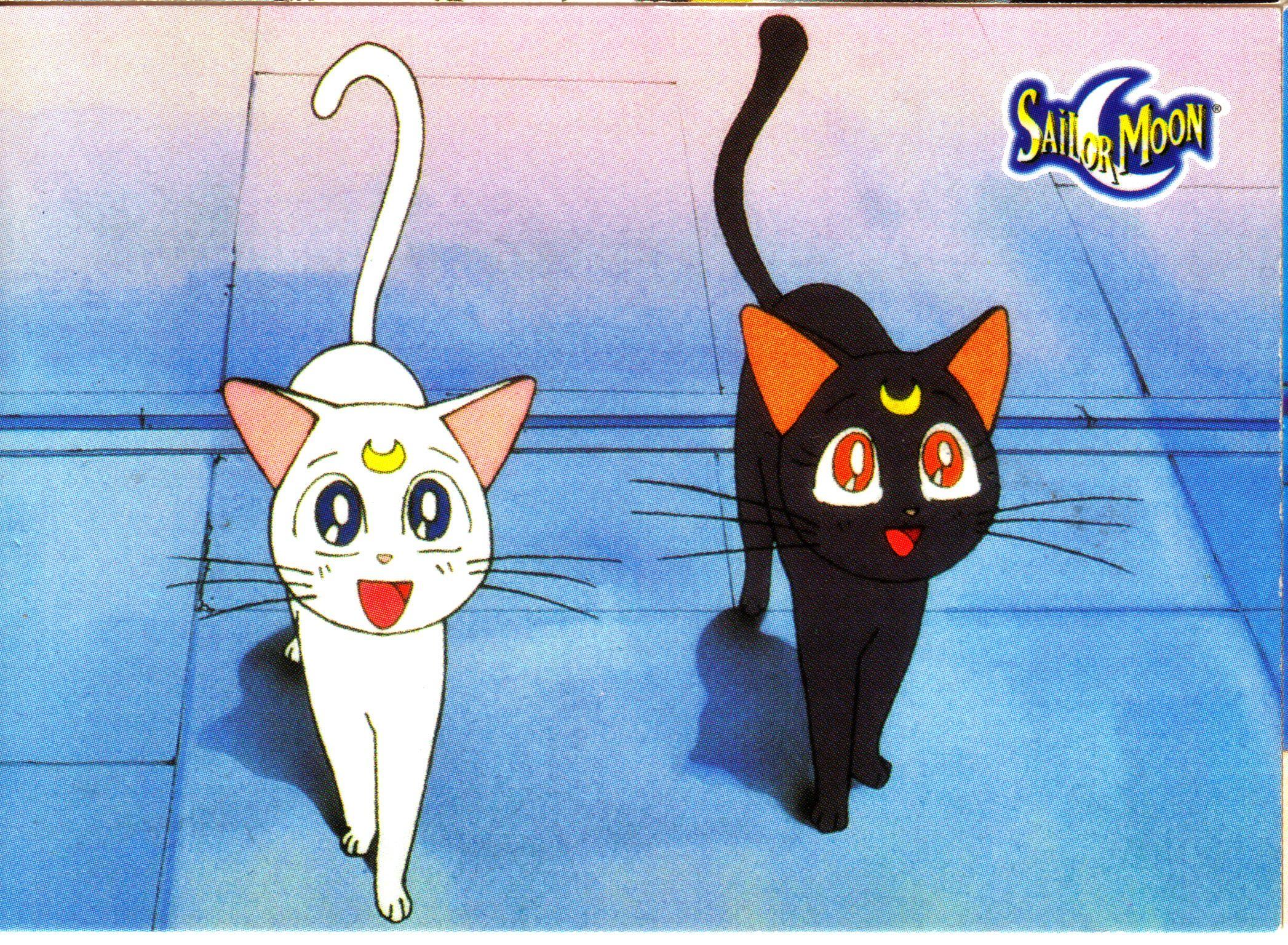 Artemis And Luna Sailor Moon Cats Sailor Moon Cat Sailor Moon