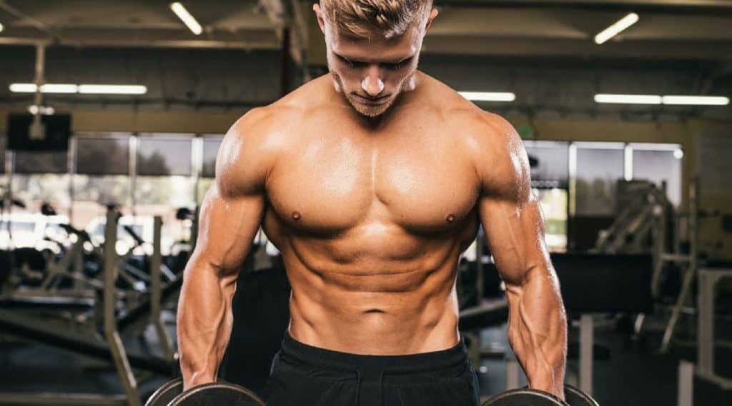 Comprimidos Para Aumentar Masa Muscular Los 10 Mejores Precursores De Testosterona Dieta Aumentar Masa