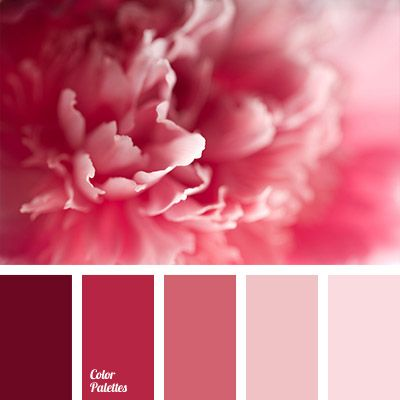 Pink Color Scheme the most delicate gradient palette of shades of pink colour, it