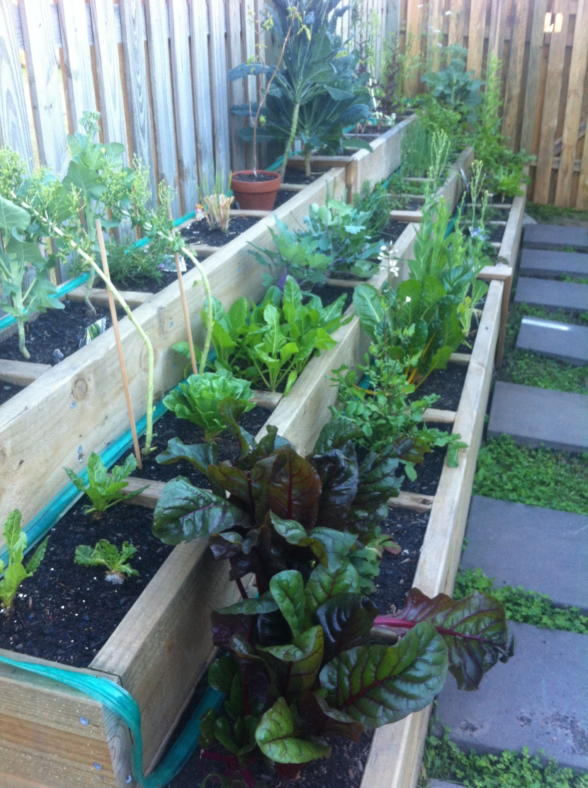 Segmented raised garden bed for herbs, veggies
