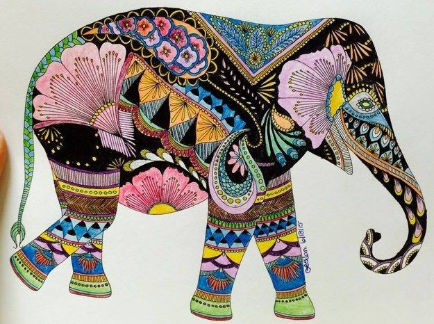 You Can Request Your Favourite Animal To Colour