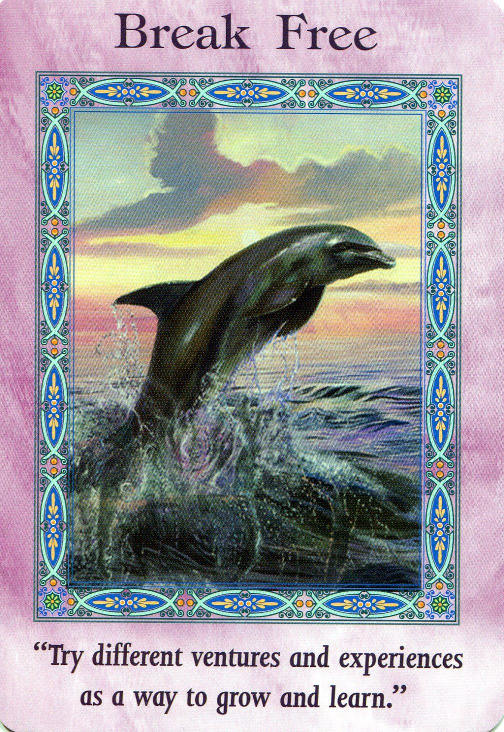 Break free magical mermaids and dolphins doreen virtue
