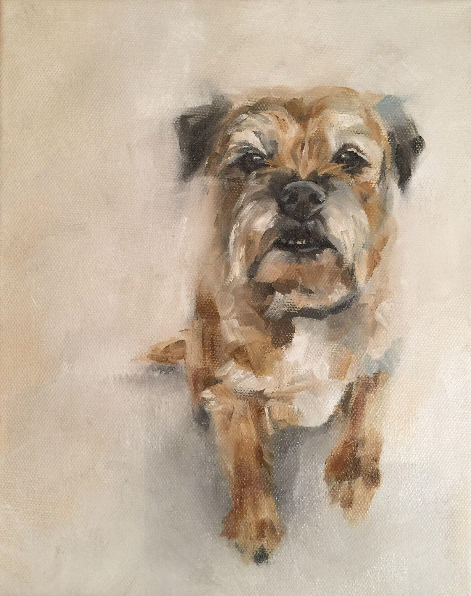 Boarder Terrier By Julie Brunn Animal Paintings Watercolor Dog