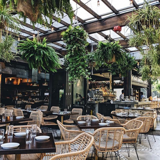Beautiful botanical plant and rattan furniture setting in this restaurant! #botanical #restaurant #restaurantinteriors #inspiringinteriors #plant #plants #jungalow #jungalowstyle #furnituredesigns