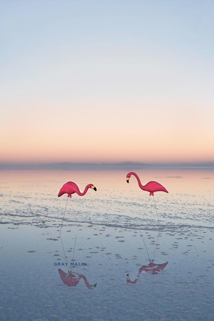 Lovin These Free Wallpapers From Gray Malin Enjoy Flamingos For Your IPhone 4 IPhone5 Lights 5 Flying Paper