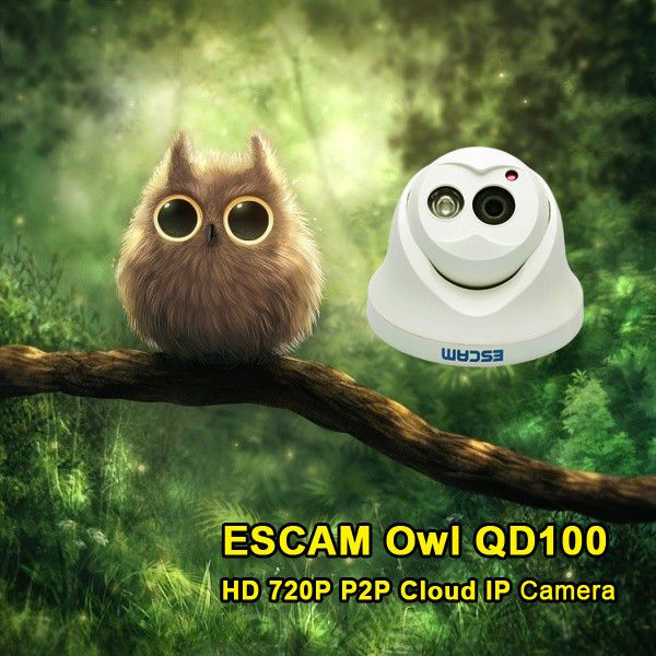 Escam QD100 720P IP Camera Network IR Cut P2P Night Vision Motion Detection Support Cute Baby OwlBaby