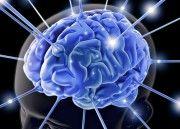 Ver Entender mejor el cerebro, clave para la inteligencia artificial