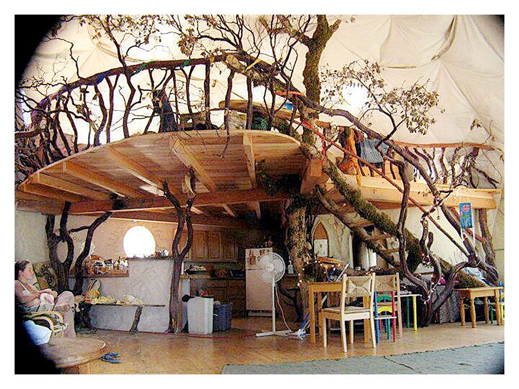 nice Great Tree House plans and designs , If you have a large tree ...