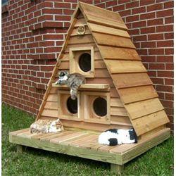 cat supplies best cat and kitten houses cats and accessories rh pinterest com
