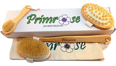 awesome Primrose Dry Body Brush Set - Long Body Brush Face Brush & Cellulite Massager - For Sale View more at http://shipperscentral.com/wp/product/primrose-dry-body-brush-set-long-body-brush-face-brush-cellulite-massager-for-sale/