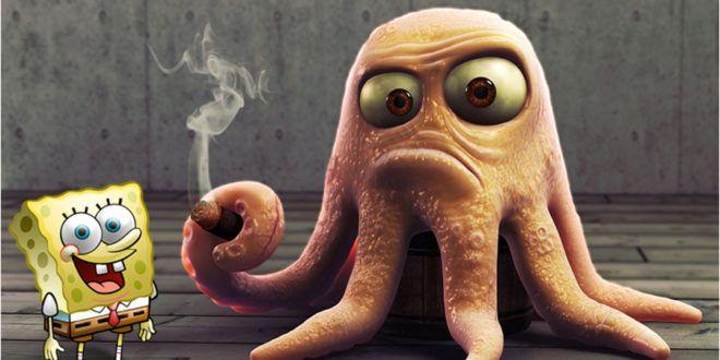 صور اخطبوط البحر خلفيات اخطبوط جميلة ورائعة لمحبين الكائنات البحرية موقع حصري Octopus Photos Photo Octopus