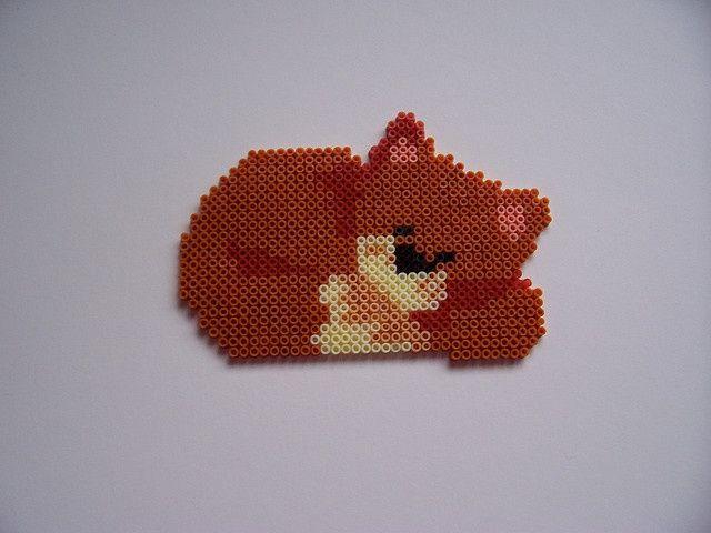 Épinglé par Mutti Mamma sur CATS   Pinterest