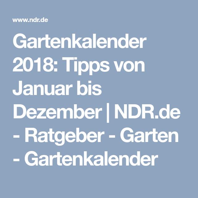 Ratgeber Garten gartenkalender 2018 tipps januar bis dezember ndr de
