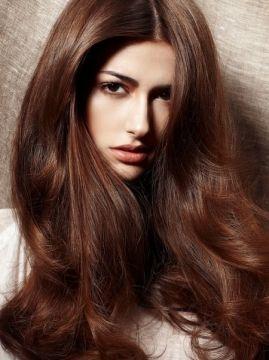 chestnut hair color hair