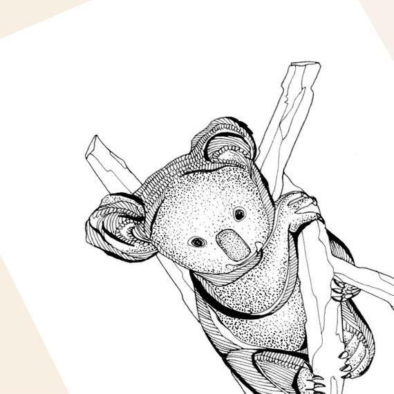 Koala Bear Greeting Card Koala Illustration Blank Card Koala Card Animal Illustration Illustrat Koala Illustration Bear Art Greeting Cards