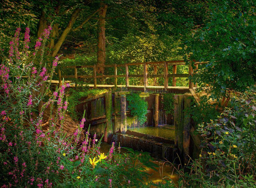 driscoll pond located in haddonfield new jersey between hopkins pond and cooper creek - Haddonfield Nj Halloween
