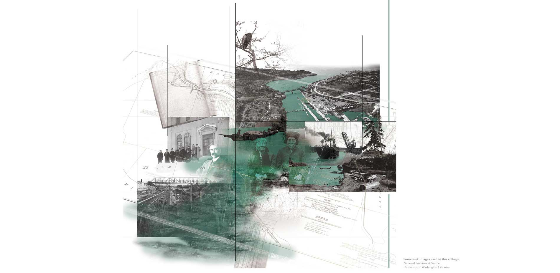 Concrete Nurse Logs Spawning Biodiversity From Ballard S Century