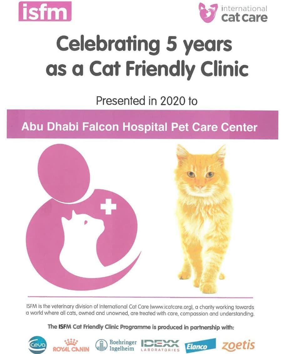 Abu Dhabi Animal Shelter In 2020 Animal Shelter Abu Dhabi Cat Care