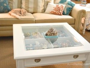 Decorate With Shells I Love Shelling Coffee Table Sofa Table Decor Seashell Display