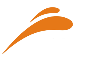 eQuick Logo for Dark Background