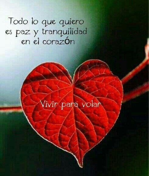 Un Corazón Tranquilo Frases De Amor Frases De