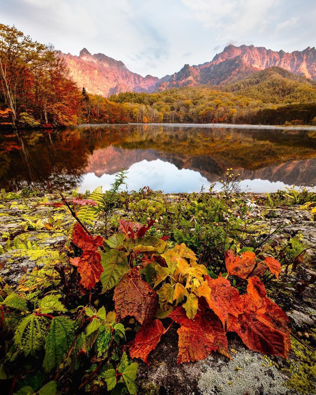 Colorful Autumn In Japan Landscape Photography By Daisuke Uematsu Amazing Nature Photography Landscape Photography Tutorial Landscape Photography