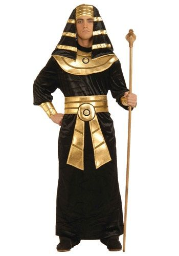 This Adult Black Pharaoh Costume is a great Egyptian-themed costume for men.  sc 1 st  Pinterest & Be dripping in gold this Halloween! This Adult Black Pharaoh Costume ...