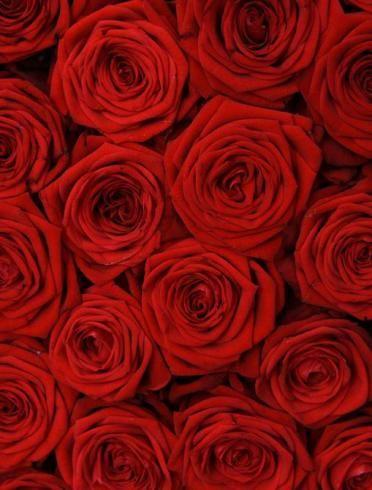 Nos #idées et #astuces pour un #mariage #rouge #passion !