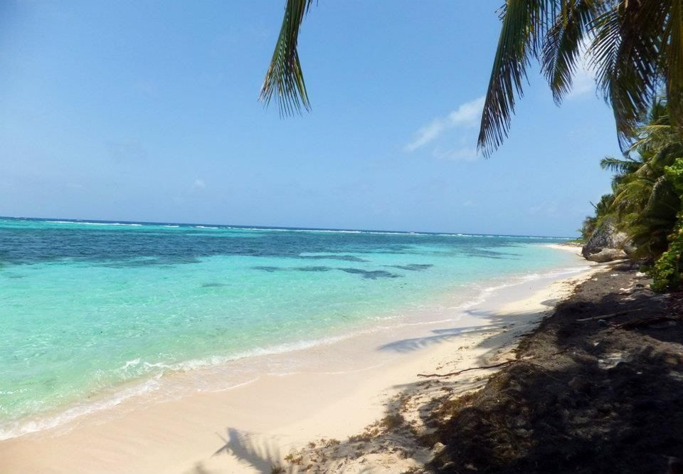 most secluded beach paradise in mona island puerto rico female rh pinterest com
