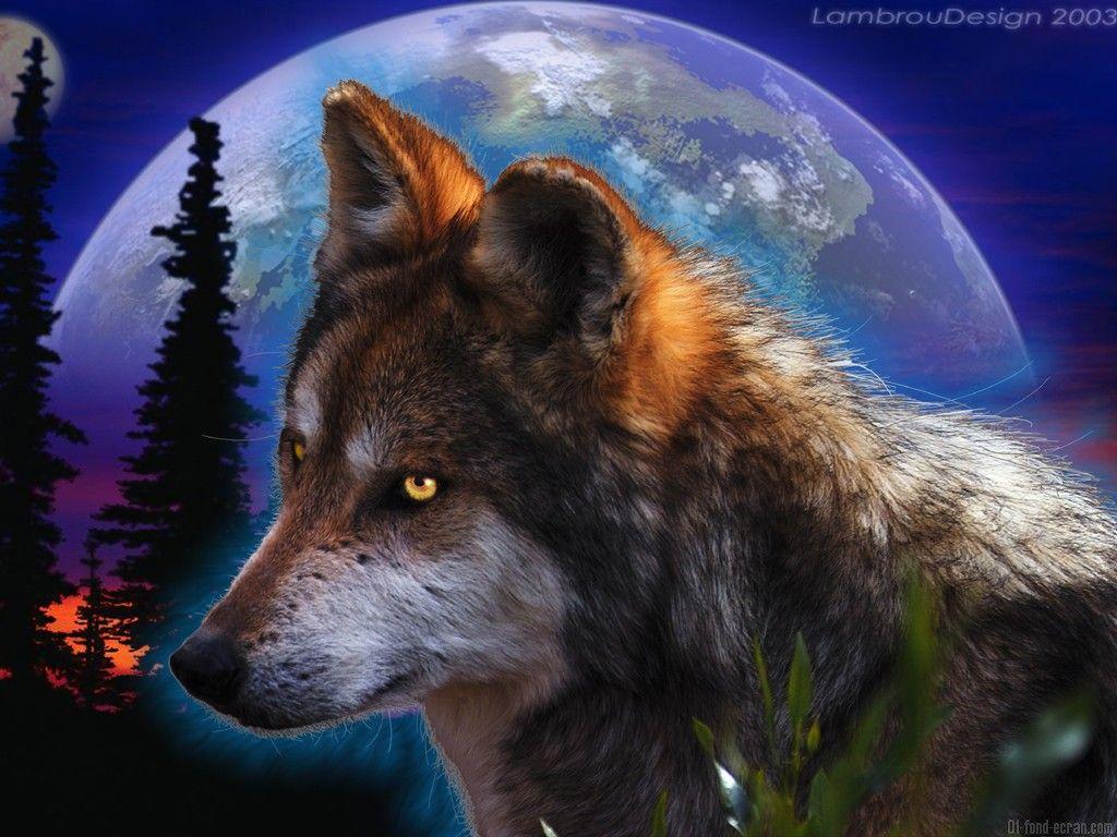 fond d ecran loup loup fantasy