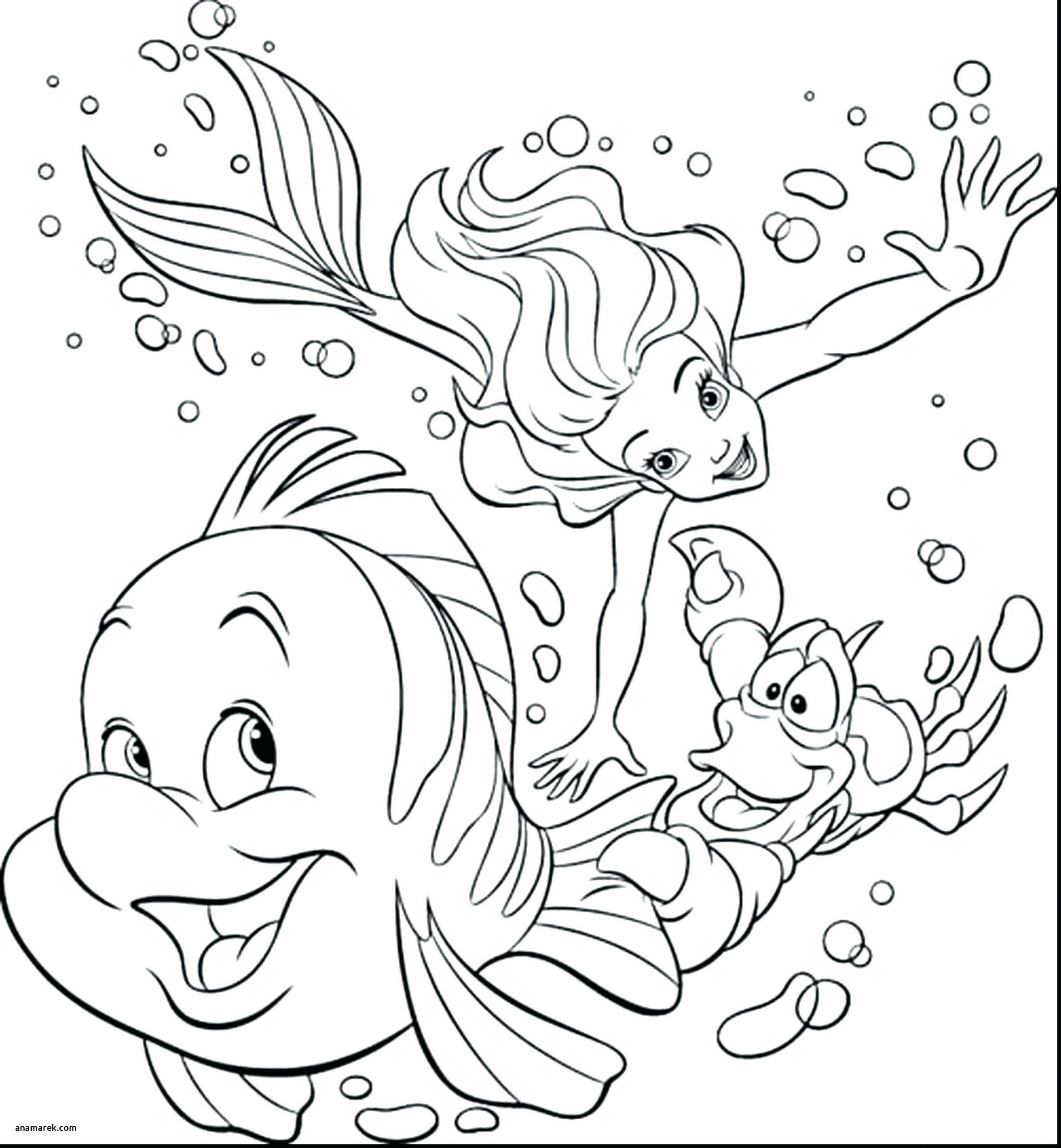 Die Besten Von Ausmalbilder Prinzessin Sofia Ideen Of Ausmalbild Prinzessin Sofia Kostenlos Ausmalbilder Wenn Du Mal Buch Ausmalen