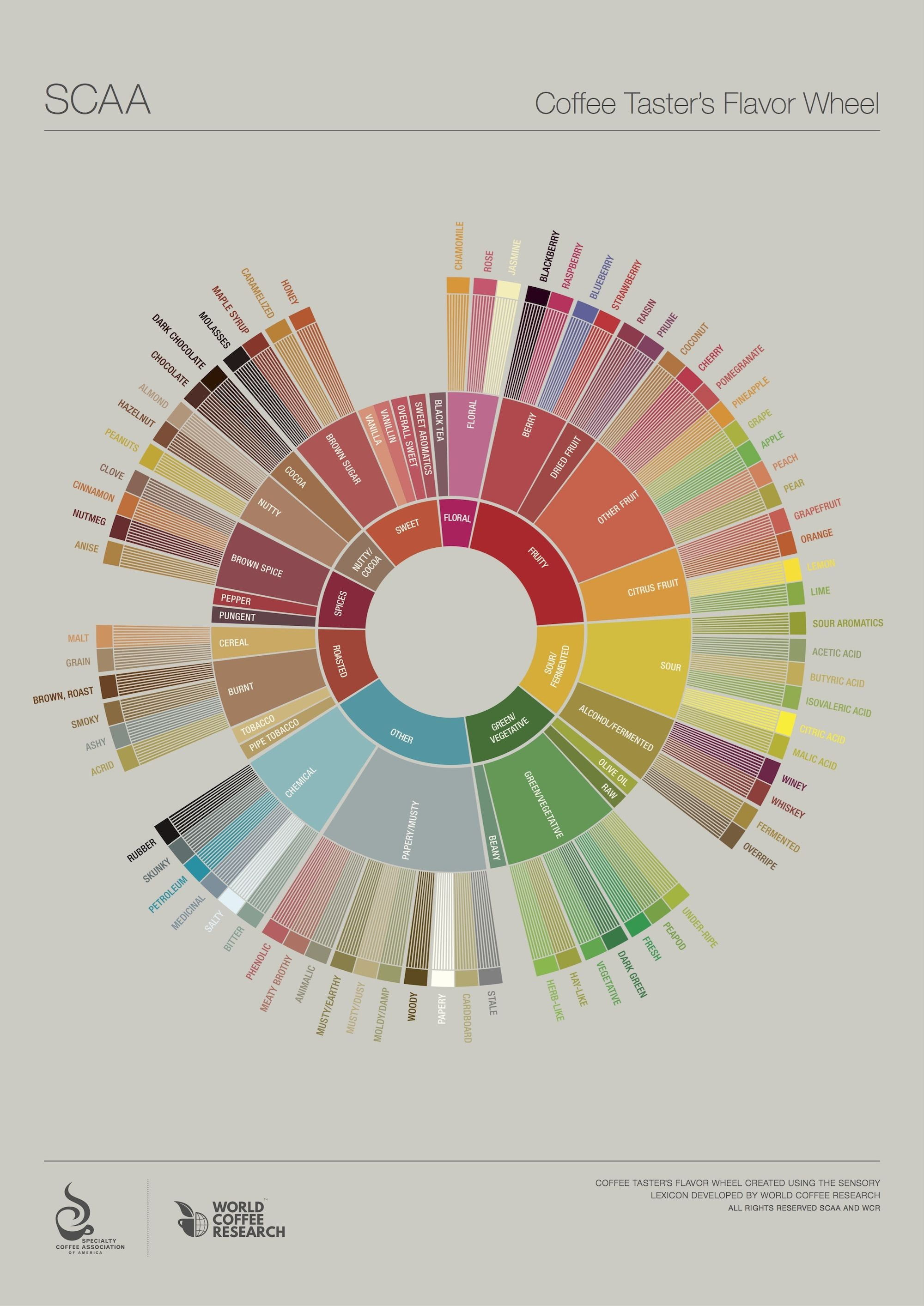 Reinventing The Flavor Wheel Industry Collaborates To Identify Coffee Flavor Attributes Specialty Coffee Association News Coffee Roasting Coffee Tasting Coffee Flavor