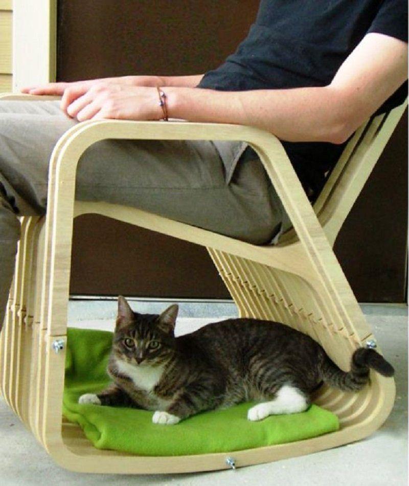 cat rocker jazz cats pinterest jazz cat cat and animal rh pinterest com