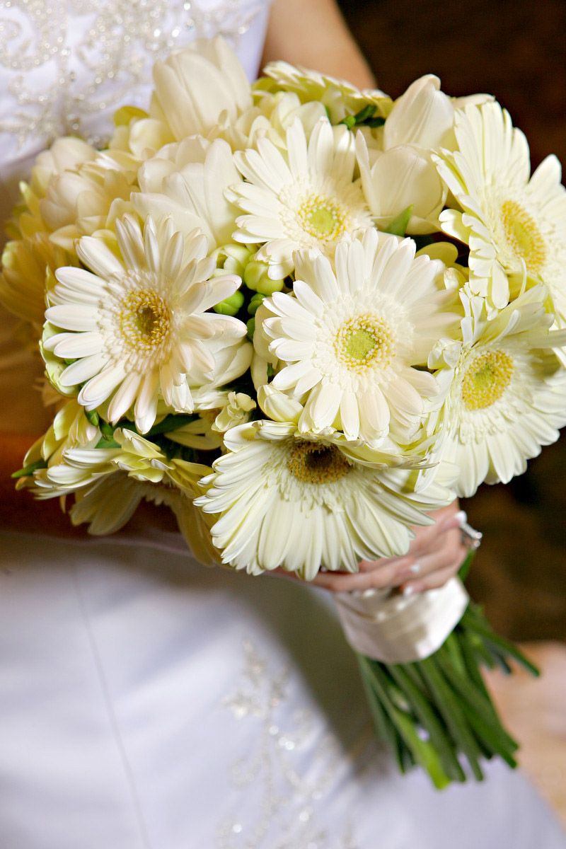 don't normally like gerber daises (traditional daisies are my favorite), but this looks cool :)