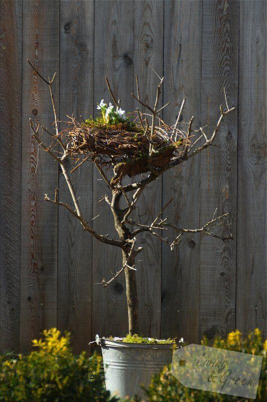 Ein Nest aus Birkenreisig - Nest aus Birkenreisig DIY | Crafts of ...