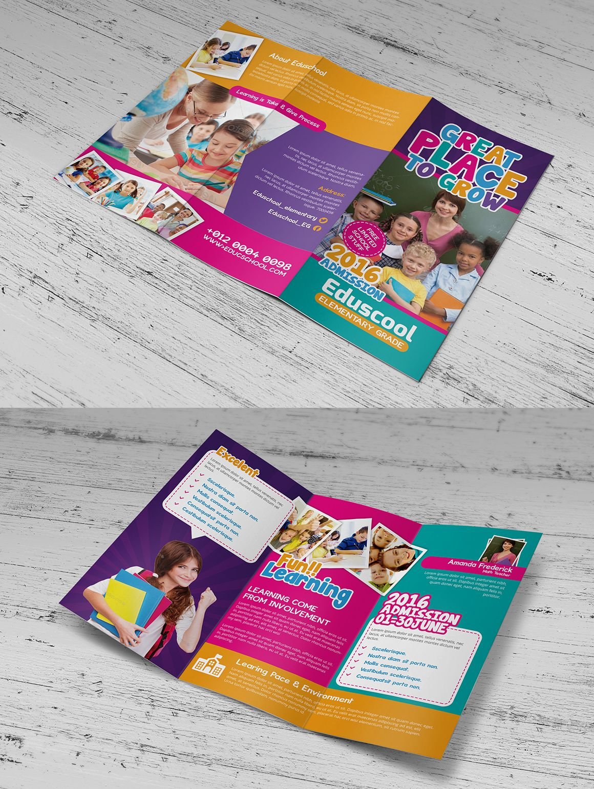 elementary school education trifold brochures 3