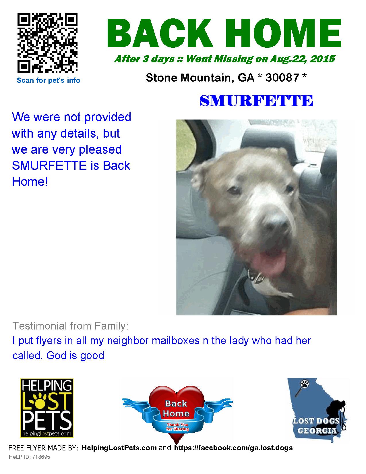helping lost pets dog staffordshire bull terrier back home rh pinterest com