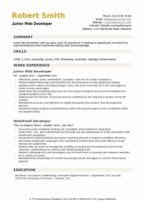 40 Web Developer Resume Template In 2020 With Images