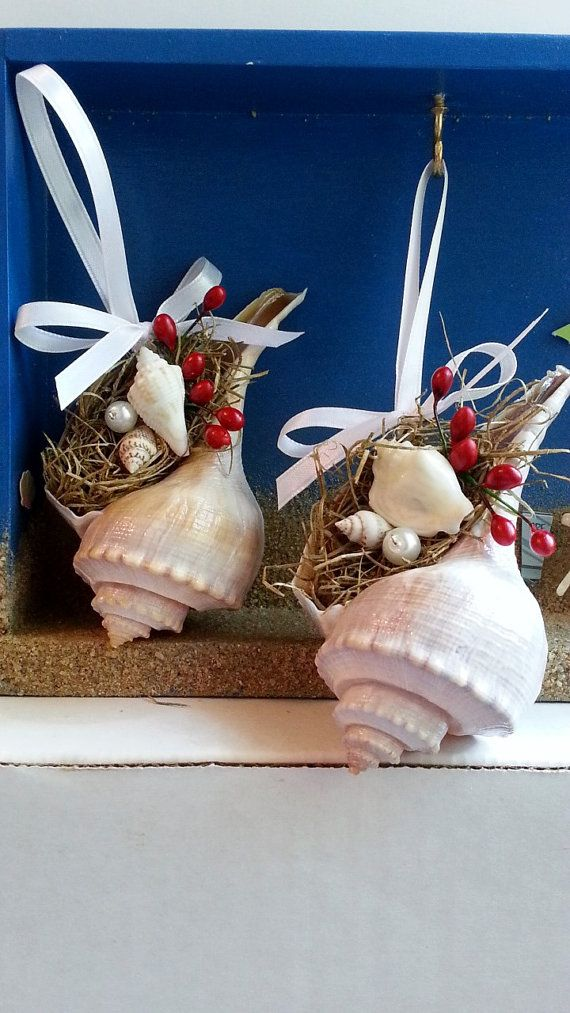 Whelk conch shell beach ornament with spanish