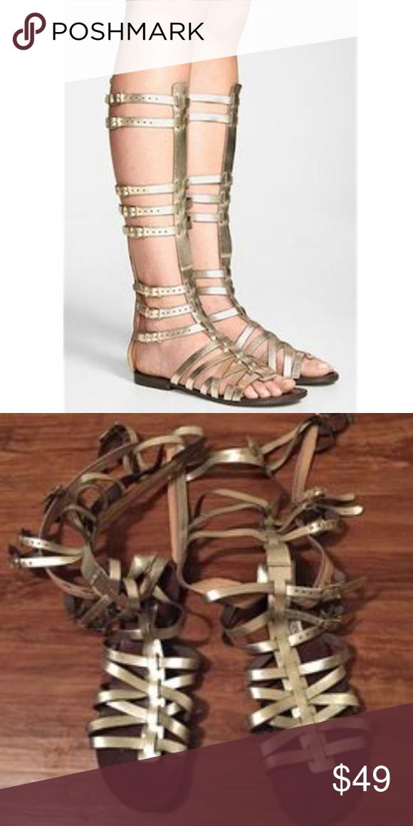 e27a8d03104 Steve Madden Sparta Gladiator Leather Sandals 9