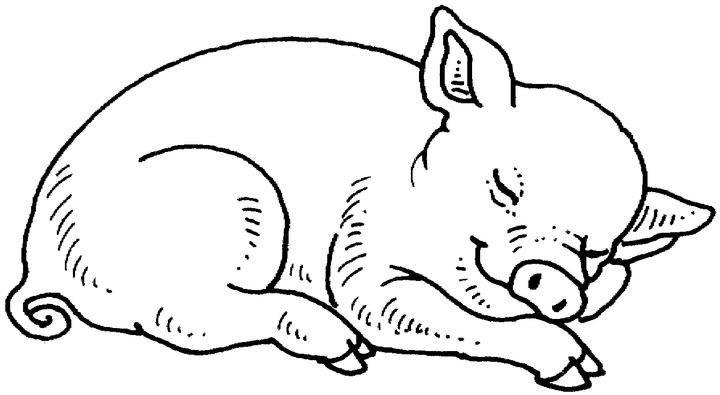 Coloriage De Cochon Gratuit.Coloriage Cochon A Colorier Dessin A Imprimer Idees