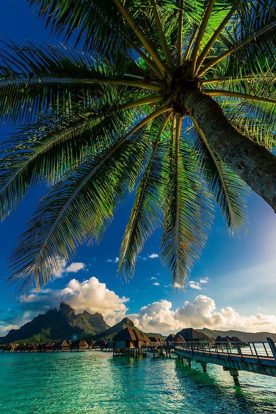 Overwater bungalows Four Seasons Resort Bora Bora