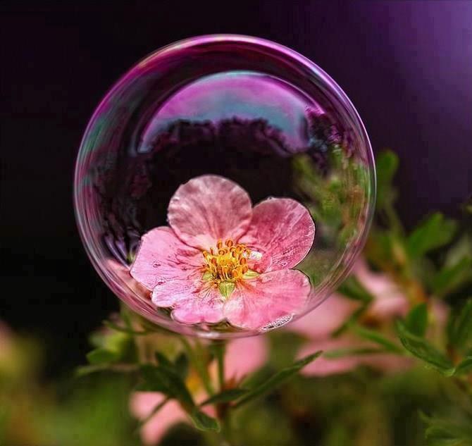 ...i min herlige boble<3...gEsAnd