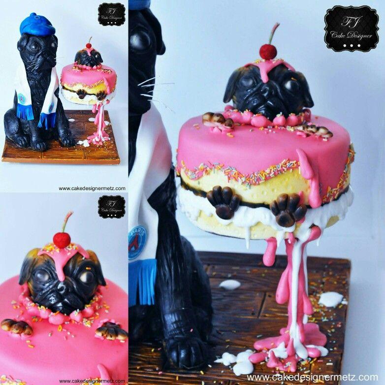 Cake defying gravity pug
