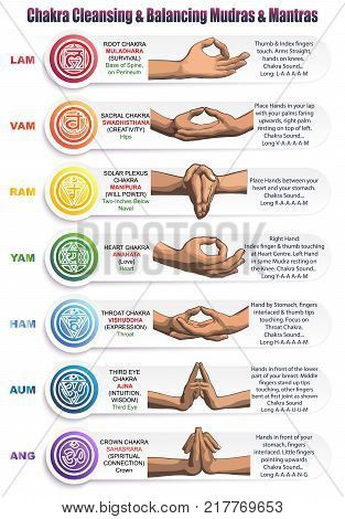 A table of meanings colors symbols signs and gestures for chakras mudras and mantras. Image of the positions of the hands with mantras matching colors and chakras with detailed descriptions. Poster ID:217769653