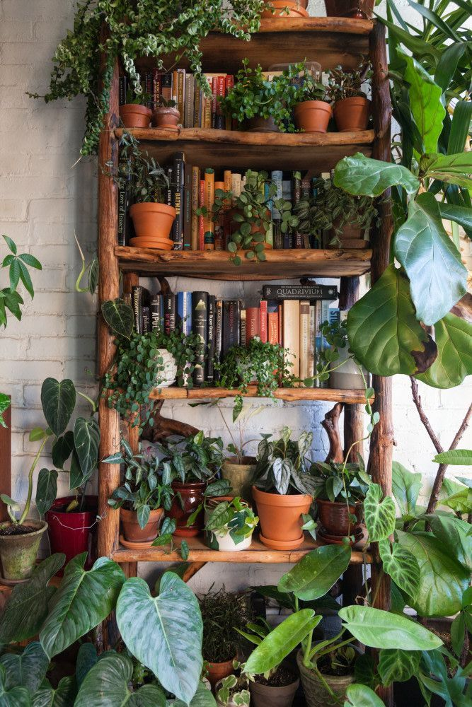 Can Online Gardening Classes Actually Make You a Better ...
