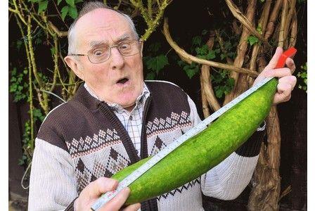 fucking-men-cucumber-in-mans-ass-gap-banged-pics